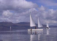trimarans in gentle breeze