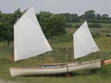The Curlew - Open Single sailing canoe